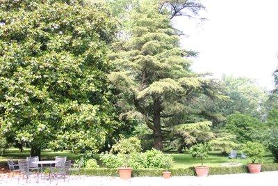 Gardens_vs_9268