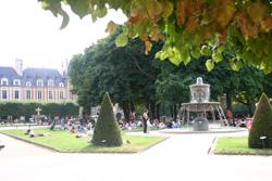 Vosges3_3002
